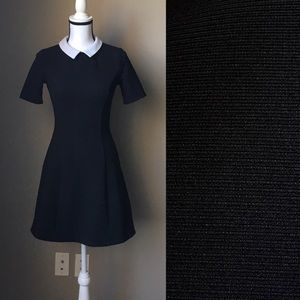 Size S Mod Style Dress with Collar